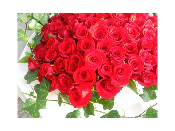SUBMIT_1358913055646_21029030.jpg