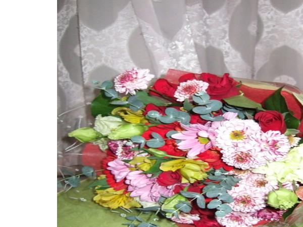 SUBMIT_1442232004354_37089651.jpg